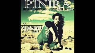 Pinjra - Jasmine Sandlas , Badshah & Dr Zeus (DJ Sanu Remix)