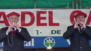 XLII-DÍA DEL GAITERO-DULZAINERO DE LAGUARDIA (ÁLAVA)2016