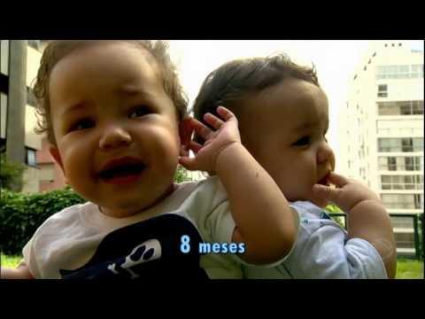Conheça a rotina da família de três pares de gêmeos