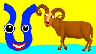 Learn the Alphabet Animals - Letter U - URIAL
