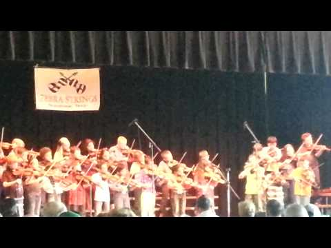 2013 zebra strings concert