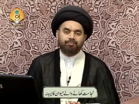 Xxx Mp4 Lecture 10 Nijasaat Nijasat Khane Wale Haiwaan Ka Paseena By Maulana Syed Shahryar Raza Abidi 3gp Sex