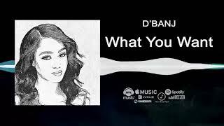 D'banj - What You Want [Official Audio]