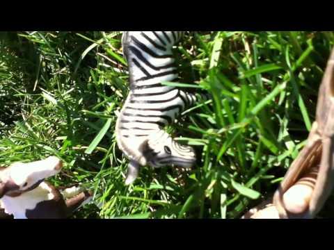 Striped'- Schleich Horse And Zebra Movie