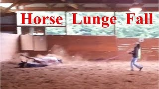 Our Horse took a fall today for the first time ever and I just happened to be videotaping