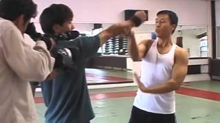 Donnie Yen Style of Action