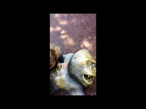 Xxx Mp4 USA Trip Zoo Excursion 3gp Sex