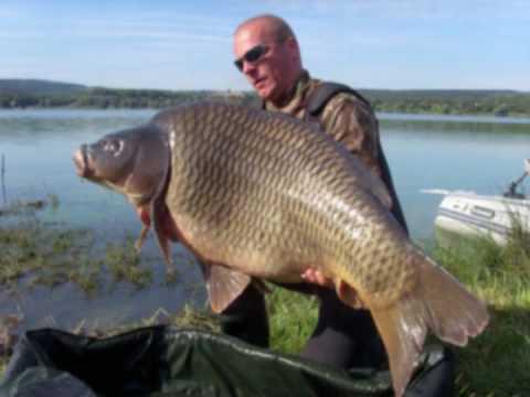 Big Carp Fishing