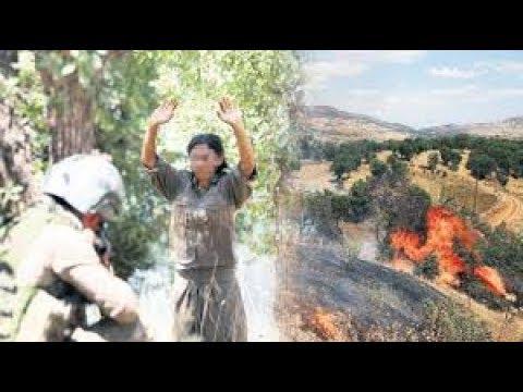 PKK'lı Teröristler Licede Askerimize Teslim Oldular ( İşte Görüntüler.. )