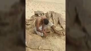 قصه السعوديين الي تزاعلو مع اخوياهم ورموهم في الصحراء كامله