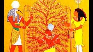 """مالاتعرفه عن  شجرة الكريسماس , أسطورة قبل """" المسيحية """" لها أصل """" مصرى """" .. !!"""