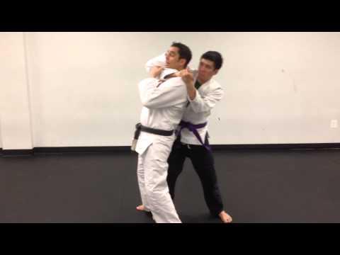 Gracie Jiu-Jitsu Rear Choke Defenses
