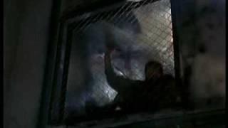 Trailer Dark Asylum
