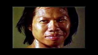 The Clones of Bruce Lee (Full Movie)