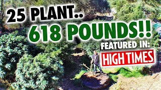 25 Plant