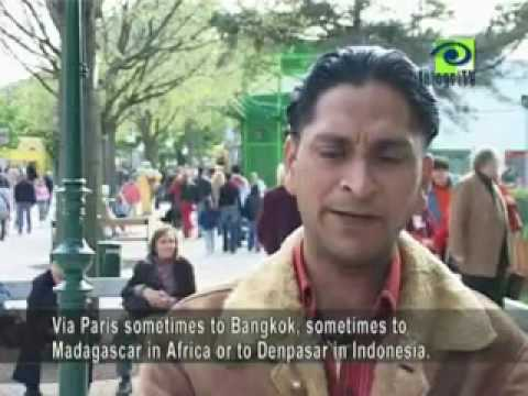Real Life of Punjabis abroad [Part 1]