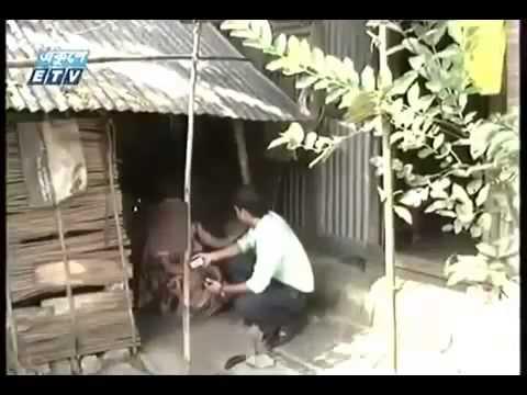 Xxx Mp4 নিজের ছোট বোনকে দিয়ে দেহ বাবসা Ekusher Chokh Bangla Crime Programe 3gp Sex