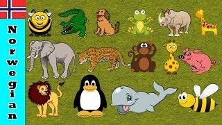 Lær farger med Dyr Navn og Lyder | Moro pedagogisk Lære video for barn