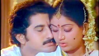 Suman, Vijayashanti Romantic Scene   Pandanti Kapuraniki 12 Sutralu Movie   First Night Scene