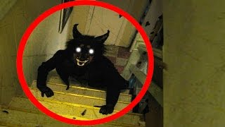 10 SCARIEST Creatures CAPTURED on CAMERA