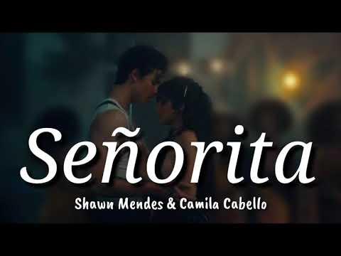 Shawn Mendes & Camila Cabello Señorita Lyrics Terjemahan Indonesia