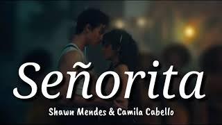 Shawn Mendes & Camila Cabello - Señorita Lyrics | Terjemahan Indonesia