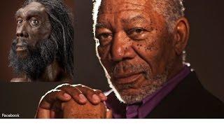 Origins of Man Documentary-Narrated by Morgan Freeman HD 2017