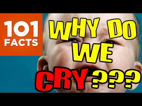 Why Do We Cry? 101 Facts
