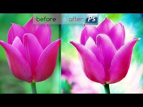 Xxx Mp4 Membuat Lighten Smudge Painting Foto Bunga ❀ 3gp Sex