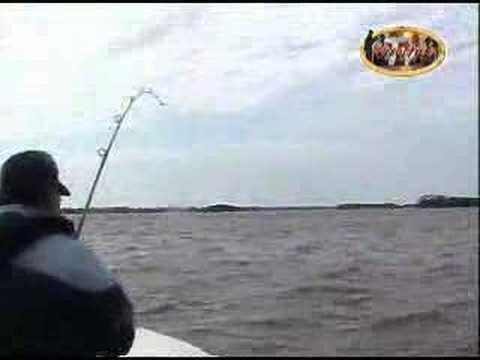 Pesca de Surubi en Ita Ibate
