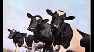 Pink Floyd - Breast Milky