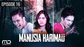 MANUSIA HARIMAU - episode 16