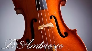 Classical Music for Studying and Concentration | Violin Study Music | Relaxing Music for Studying