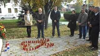 HDSSB Općina Koška  Obilježavanje dana pada Vukovara 2012