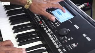 KORG PA 300 Indian Sound Library
