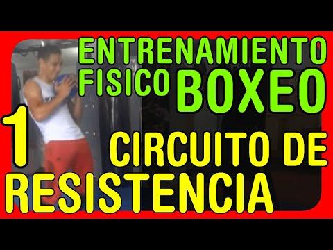 Entrenamiento Físico para boxeo Circuito de resistencia a la potencia y a la fuerza muscular 02
