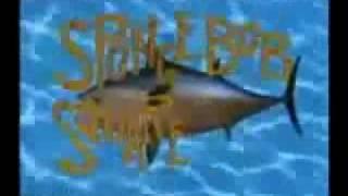 Spongebob Theme Backwards and Fast Foward