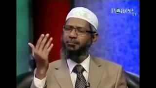 The Best of Dr Zakir Naik on Shahrukh Khan and the beard   YouTube