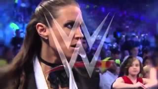 WWE Wrestlemania 30   Daniel Bryan vs Triple H 720p HD