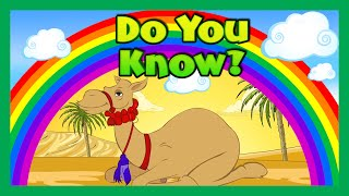 DO YOU KNOW | Things To Know For Kids - Children Learning Video