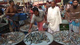 যে ঘাটে শুধু মাছ আর মাছ || Prothom Alo News