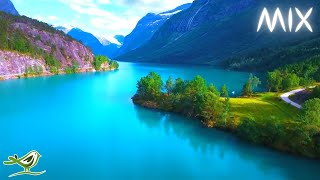 Beautiful Relaxing Music with No Loops - Stunning Nature & Calm Music