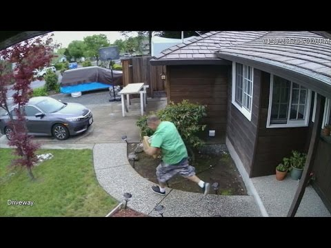 Police try bait packages to nab porch pirates