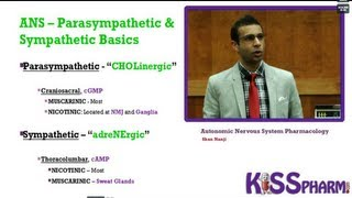 Autonomic Nervous System Pharmacology Lecture. The best way to learn Pharm by KISSPharm