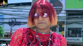 Chirutha Movie Comedy Scenes Back to Back | Ram Charan, Neha Sharma | Sri Balaji Video