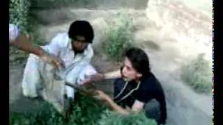 sindhi monkey story.3gp