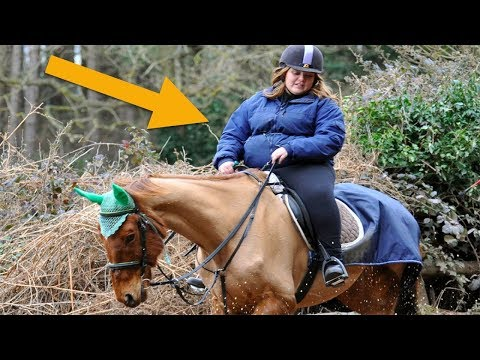 Xxx Mp4 When This Woman Took A Selfie With Her Horse People Spotted The Cruelty She 39 D Tried To Conceal 3gp Sex