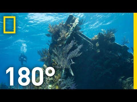 Underwater on Bermuda's Montana Shipwreck – 180 National Geographic