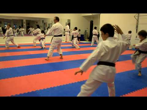 Kata Class Confusion - Purple Belt Testing Kata, Brown Belt Testing Kata 2012