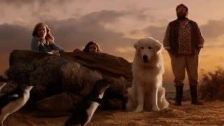 Oddball & The Penguins - Official Trailer